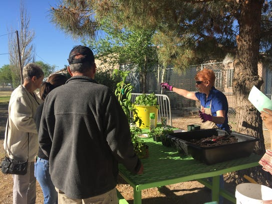 Learn all about gardening from Master Gardeners at