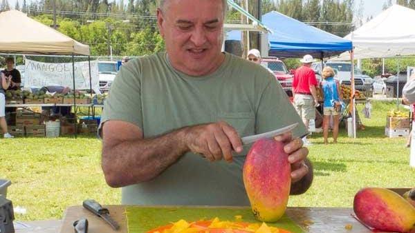 Volunteer cutting mango at MangoMania