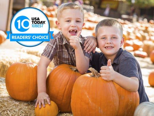 These 20 fall harvest festivals offer seasonal fun