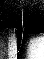 A hanging wire in a school at 261 Route 306 school
