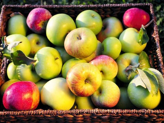 Brown's Orchards will be giving away free apples from 10 a.m. to noon at Red Lion Chevrolet's commercial auditions next Saturday, Aug. 29.