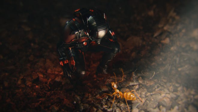 Scott Lang (Paul Rudd) has  a pep talk with a new insect buddy in 'Ant-Man.'