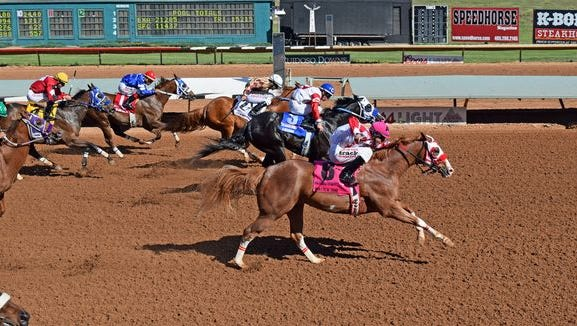 The Apollitical Jess-sired Apolltical Chad races on Saturday in the fourth trial with the eighth post position. Adrian A. Ramos will be aboard.