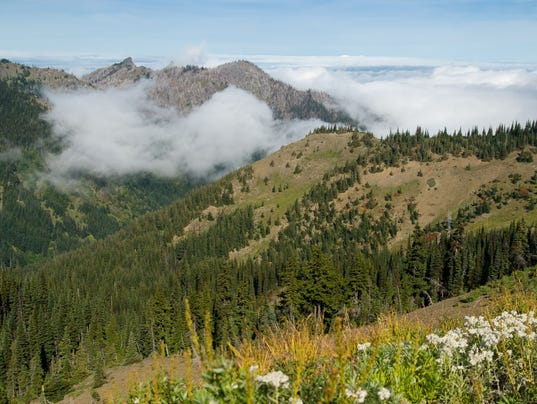 8-olympicwilderness-flickr_dolanh