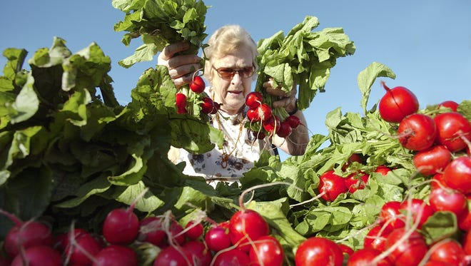 The Cape Coral Farmers Market returns for its 23rd year on Saturday, Oct. 1.