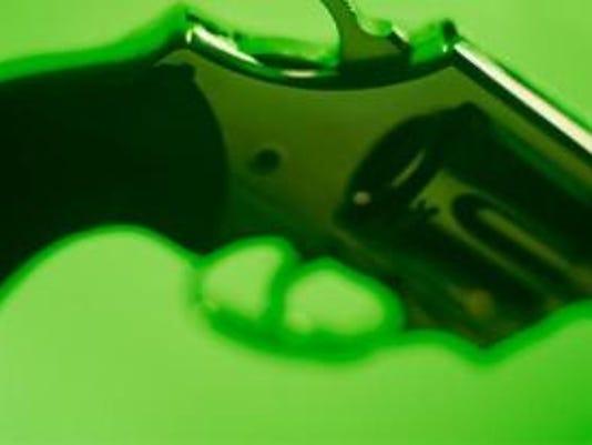 GUN (2).PNG