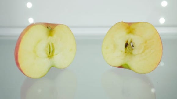 The apple half with the Fridge Fresh (left) didn't brown as much or as quickly as the half without the device.