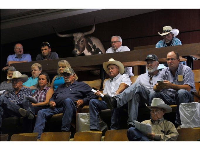Buyers watch and bid on donated items at Abilene Livestock