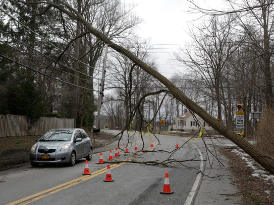 A downed tree covers Old Yorktown Road in Yorktown,
