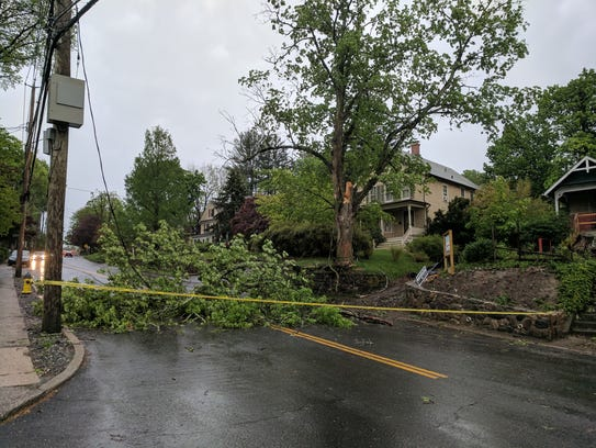 A tree was down on King Street at Castle Road in Chappaqua