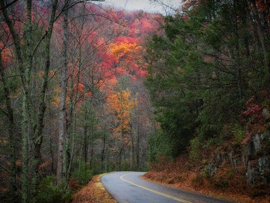 636180110898761337-Smokies-trails-reopen.jpg