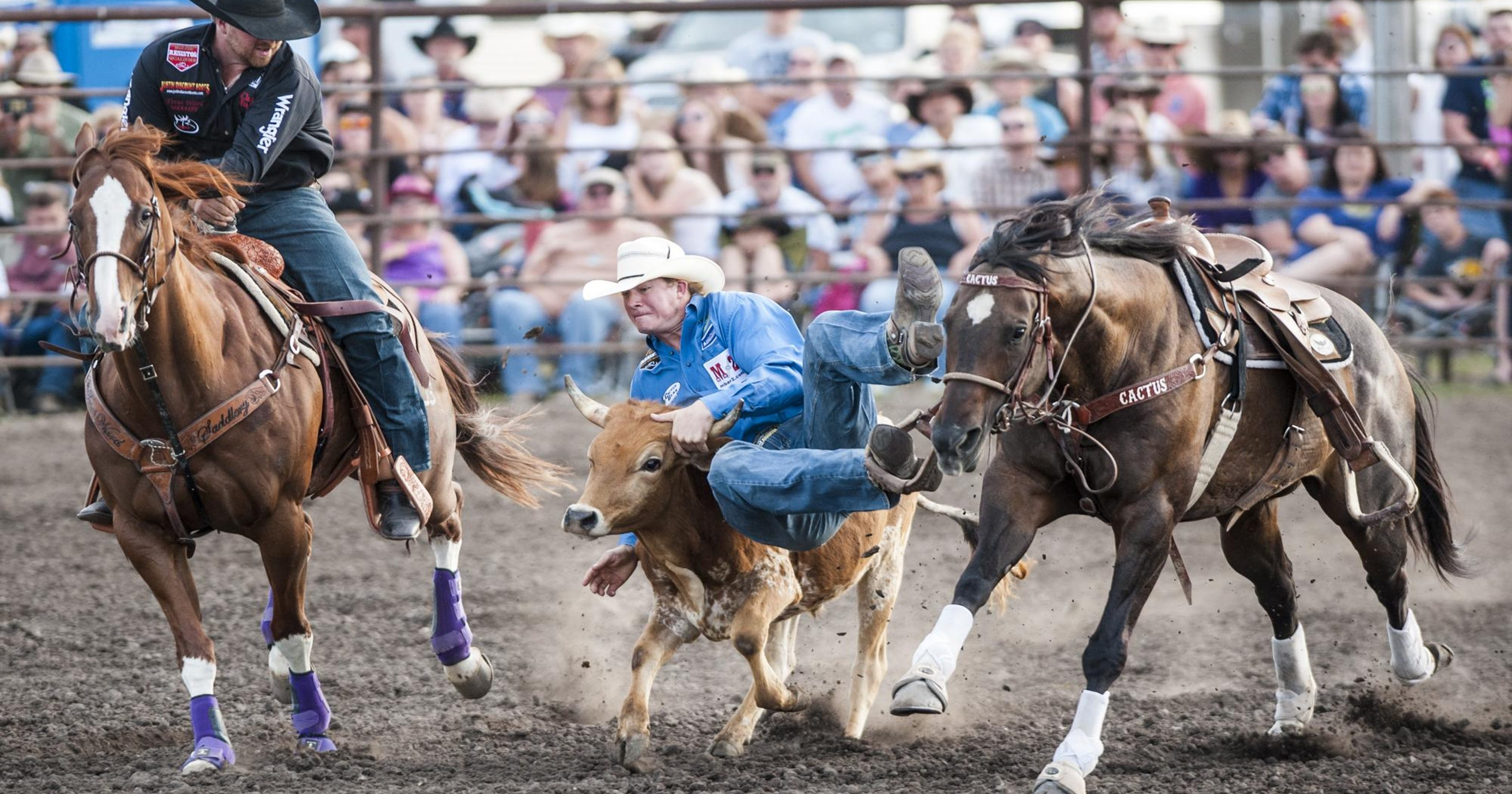 Helena's Ty Erickson flashes NFR form at Big Sky Pro Rodeo Roundup