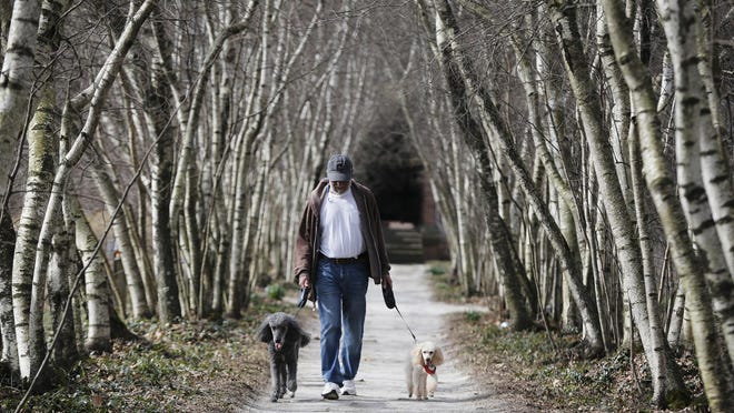 John Daubney of Akron walks his poodles Ralph, left, and Toby, down the Birch Allee during the first Woof Walks of the season at Stan Hywet Hall & Gardens Sunday, April 8, 2019 in Akron. Woof Walks have returned to the property this year on Sundays.
