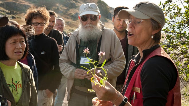 Sequoia National Park plant ecologist Sylvia Haultain, right, discusses local wildflowers, as plant and bird enthusiasts toured the countryside on an Audubon Society field trip that started at Woodlake Botanical Gardens in Woodlake on Saturday, March 21, 2015. Penny Stewart lead the birding portion.