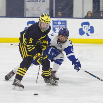 Hartland routed, but at least Eagles won't see Detroit Catholic Central in hockey playoffs