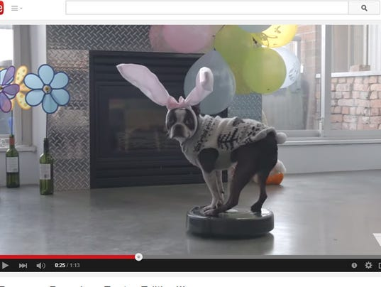 CUTE: 'Easter Dog' rides Roomba