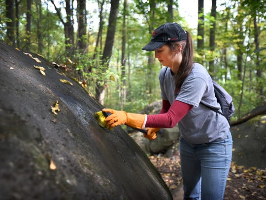 Karen Good uses a scrub brush to remove spray paint from a boulder Sunday at Clarence Schock Memorial Park at Governor Dick in West Cornwall Township on Sunday, Oct. 16. Good and other volunteers cleaned off the graffiti that defaced many of landmark rocks in the park.