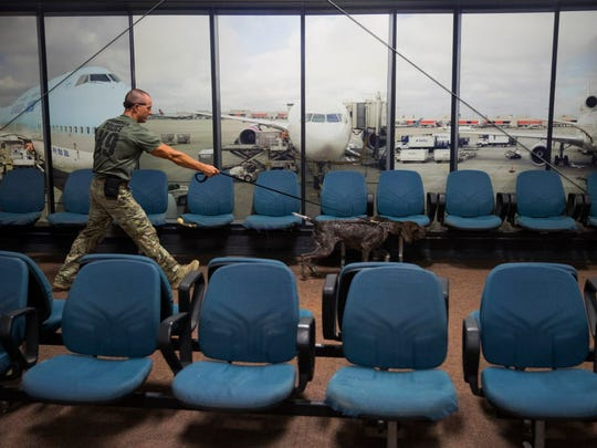 Scott Hastings of the Birmingham Police Department searches a replica of an airport terminal with Mira, a German short-haired pointer, at the Transportation Security Administration's National Canine Training Center in San Antonio on Sept. 13, 2017.