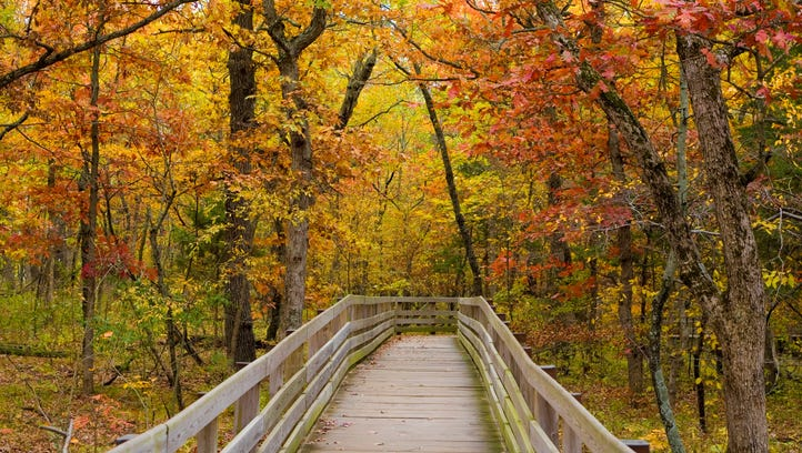 Fall foliage at Starved Rock State Park in Illinois
