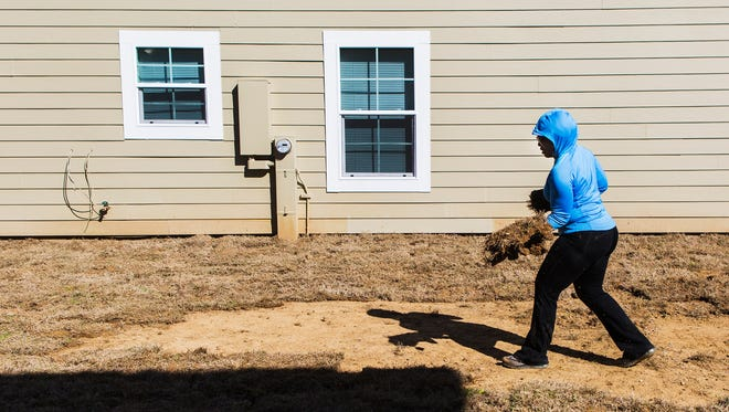 "Lisa Fields, a member of New Direction Christian Church, lays down sod at a house during a Habitat for Humanity of Greater Memphis (HFHOGM) dedication of nine new homes in the Eden Square neighborhood on Saturday morning. ""We're helping to build affordable homes for folks in our community and, so, today was our outreach event to help lay sod and landscaping for nine homeowers,"" Fields said."