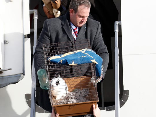 "Pet rabbit ""Marlon Bundo,"" is carried off the plane"