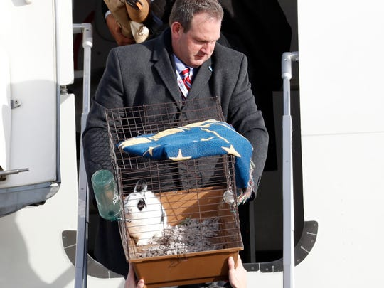 "Pet rabbit ""Marlon Bundo,"" is carried off the plane of Vice president-elect Mike Pence as he arrives with his wife Karen Pence and daughter Charlotte Pence, at Andrews Air Force Base, Md., Monday, Jan. 9, 2017. (AP Photo/Alex Brandon)"