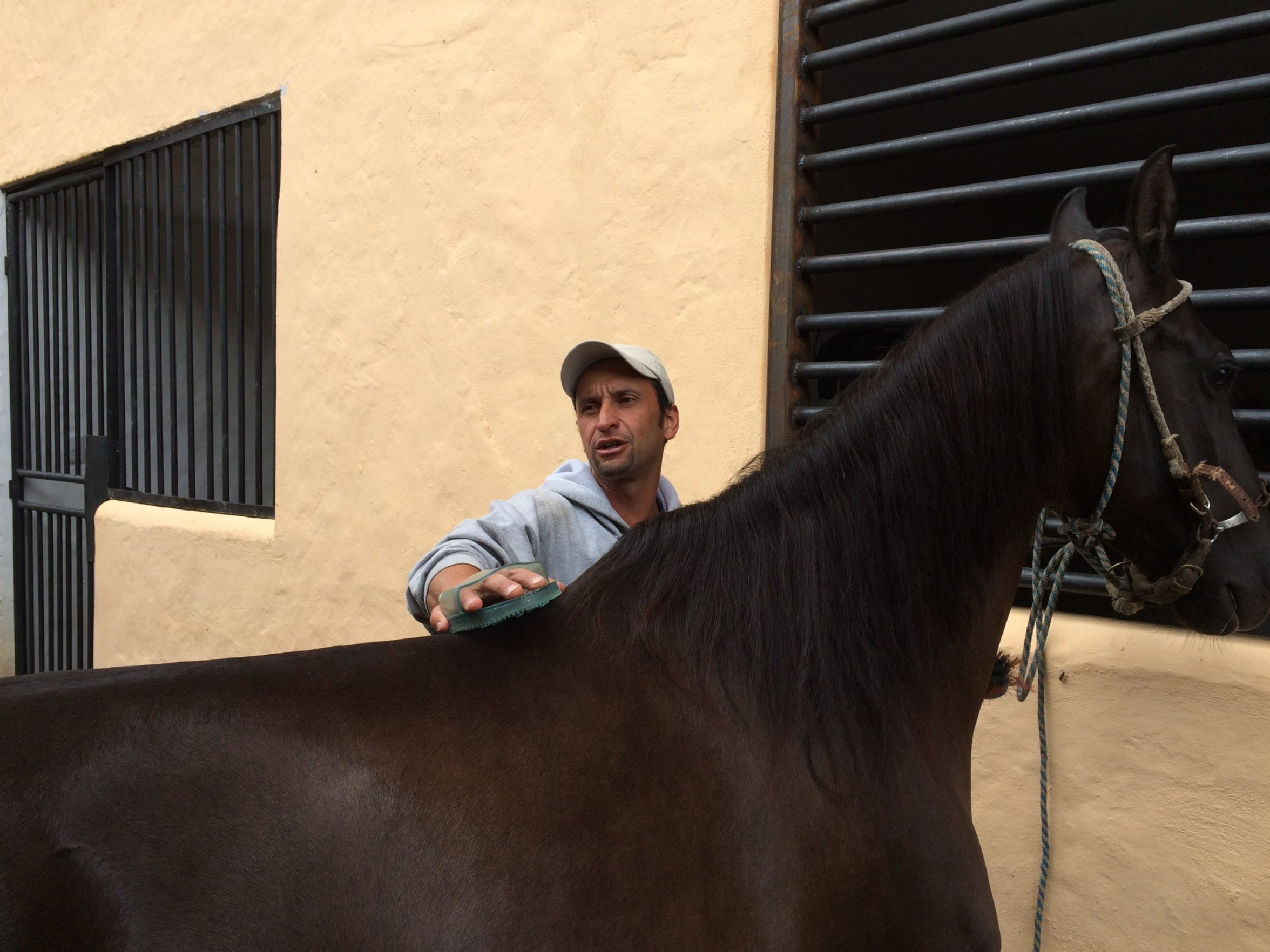Hugo is a horse caretaker who is participating in the