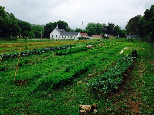 Old School Farm is located at 5022 Old Hydes Ferry Pike in the Bells Bend area.