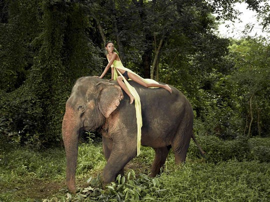 A contestant poses atop an elephant in Thailand in