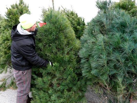 635859618793266190-FON-121715-christmas-tree-2.jpg