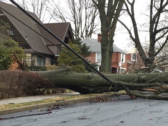 A tree that fell during Wednesday night's storm rests on electrical wires on Third Avenue between East Pershing Avenue and Grant Street in Lebanon.