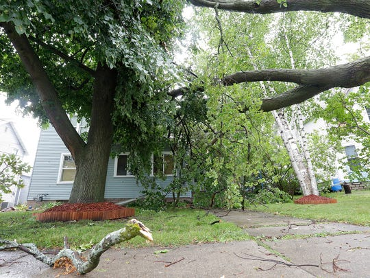 Part of a tree rests on a house at 114 Franklin St.