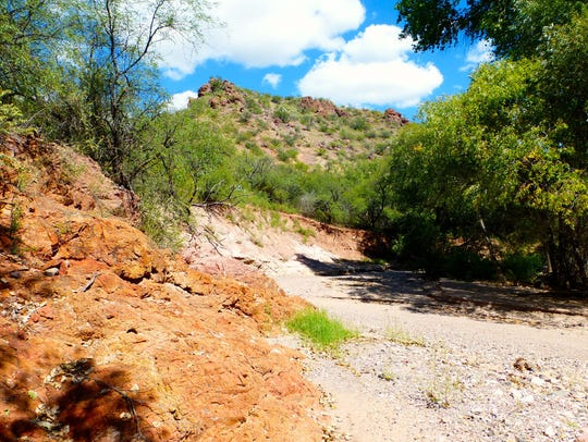 Muleshoe Ranch is filled with  shady riparian corridors