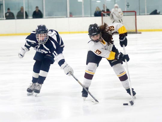 Warbirds senior forward Maike Zipp from Fond du Lac said returning to the state tournament this year would be everything in her final hockey season.