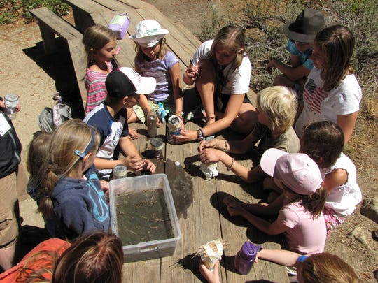 A Spring Exploration Camp provides kids with a chance to get outside and enjoy the outdoors at Galena Creek Regional Park.