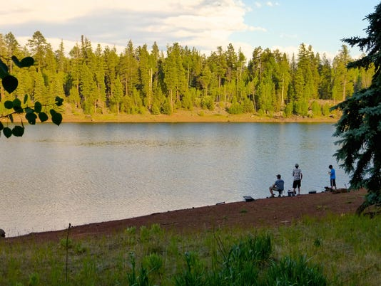 Pinetop Lakeside