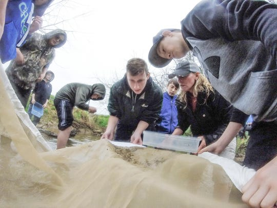 Seventh-grade students from York Suburban Middle School release brook trout they raised in their classroom into Kreutz Creek in Windsor Township, Saturday, April 22, 2017. John A. Pavoncello photo