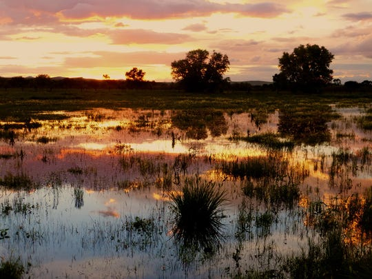 A colorful sunset is reflected in a flooded pasture
