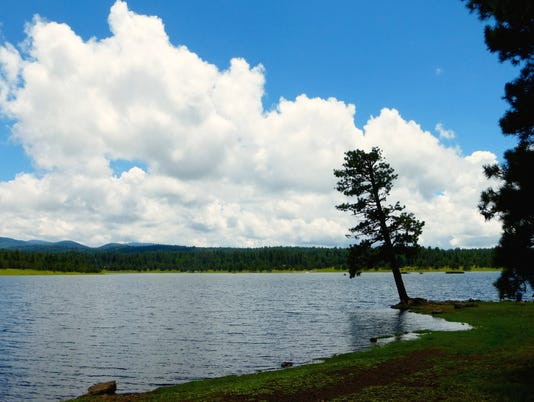 White Mountains scenic drives