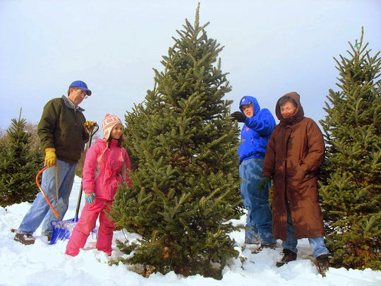 Jim and Kelly Tremper, far left and right, took their children, Clancy and Patrick, to Fabulous Firs Christmas Tree Farm in LaGrange Saturday (12/15/07) to cut down a live tree for the holidays.