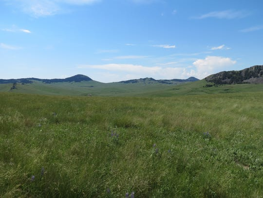 The Birdtail property is characterized as an intermountain