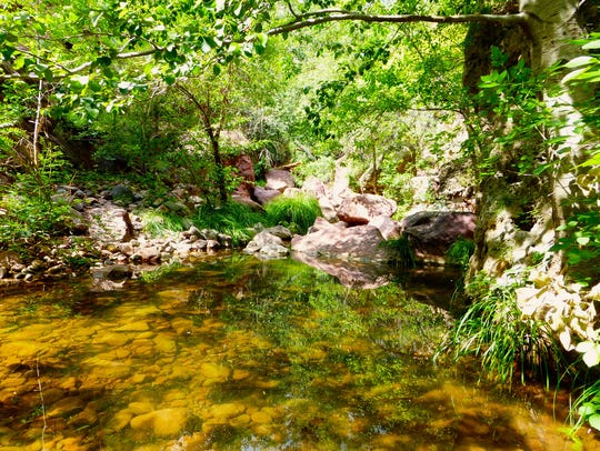 The Pine Creek Trail at Tonto Natural Bridge State