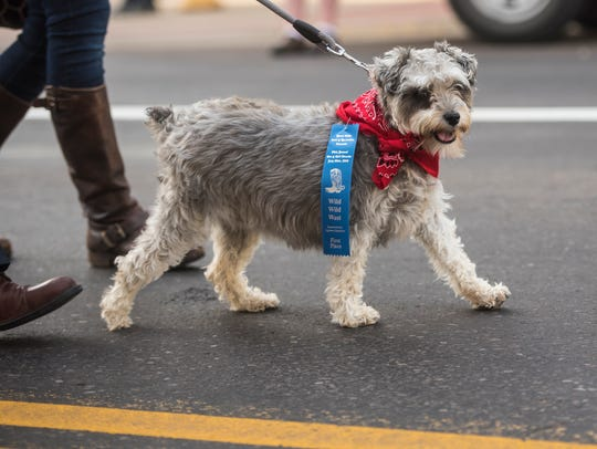 The 84th Annual Pet and Doll Parade down Central Avenue