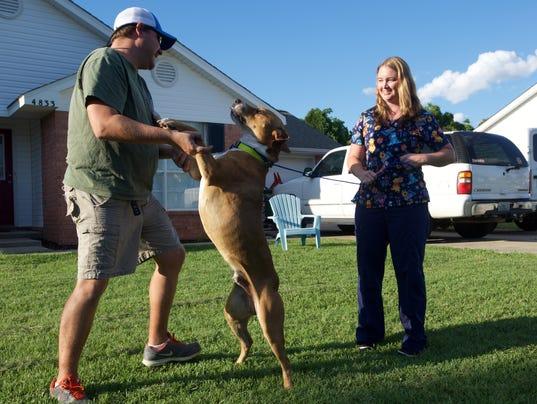 Wounded Dog Returned