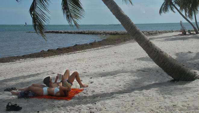 Beach-goers relax under a palm tree on a Key West, Fla.