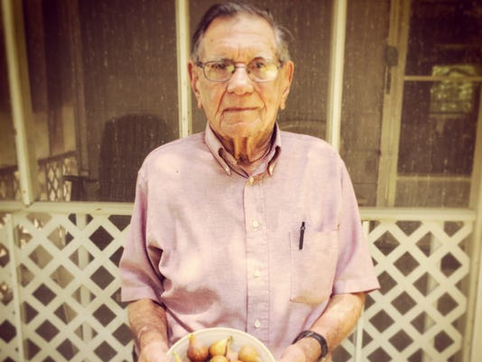 636337357995100080-My-PawPaw-with-his-fig-bounty.JPG