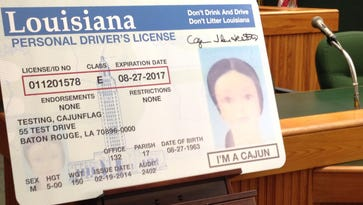 How many people say 'I'm a Cajun' on their driver's license?