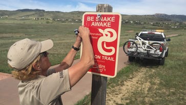 Rattlesnakes are out in Colorado. Here's how to stay safe on the trails.
