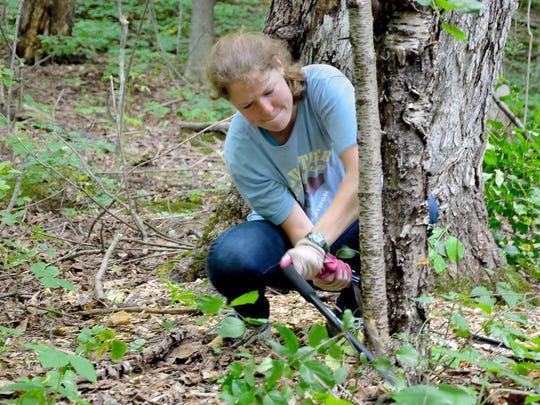 Eagle-Mtn-volunteers-removing-invasive-trees-shrubs-photo-courtesy-of-Lake-C (4)