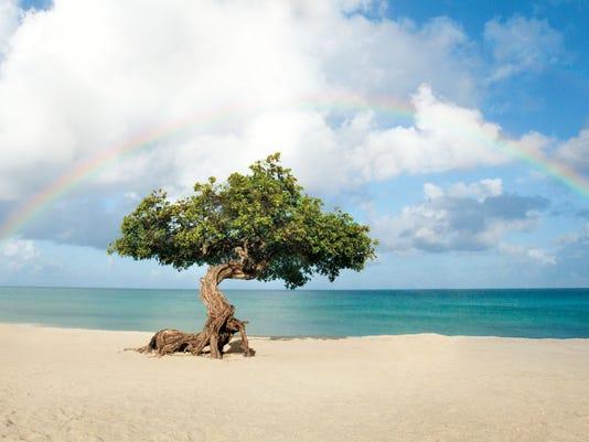 Beautiful Caribbean Photo Tours Of The ABC Islands
